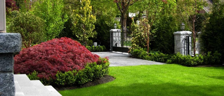 Selkirk Front Garden
