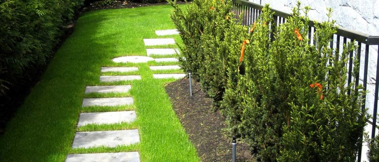 Selkirk Side Garden