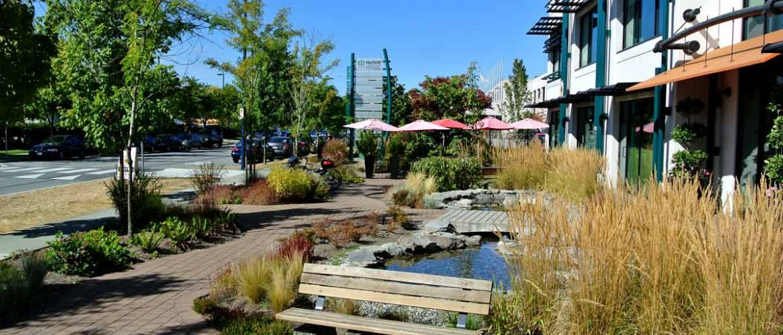 Harbourside Frontage Garden