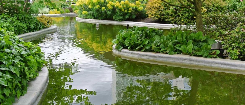 Aquarius Pond 2