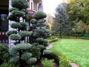 Osler Residence Rear Garden