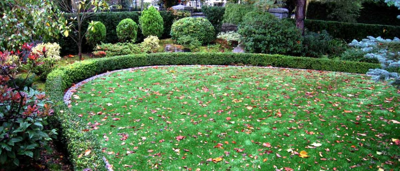 Osler Residence Side Garden