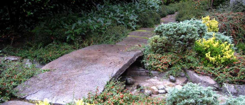Osler Residence Stream with Bridge