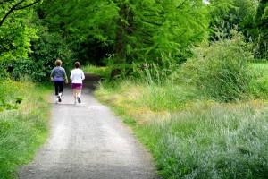 Rupert Park Urban Trail