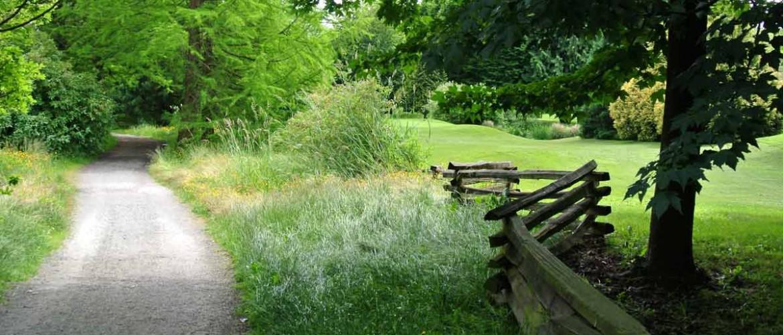 Rupert Park Urban Trail and Golf Course Edge